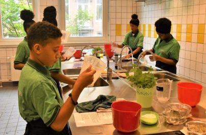 http://www.zuiderlichtcollege.nl/wp-content/uploads/AMA_2180.jpg