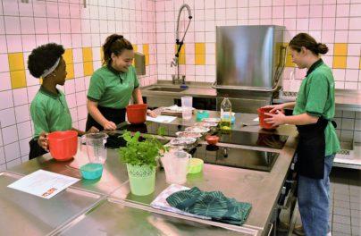 http://www.zuiderlichtcollege.nl/wp-content/uploads/AMA_2195.jpg