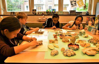http://www.zuiderlichtcollege.nl/wp-content/uploads/AMA_2241.jpg