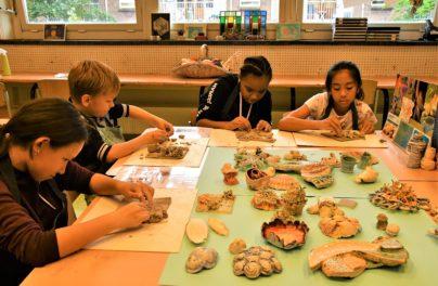 http://www.zuiderlichtcollege.nl/wp-content/uploads/AMA_2243.jpg