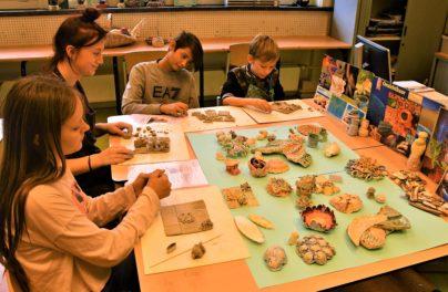 http://www.zuiderlichtcollege.nl/wp-content/uploads/AMA_2254.jpg