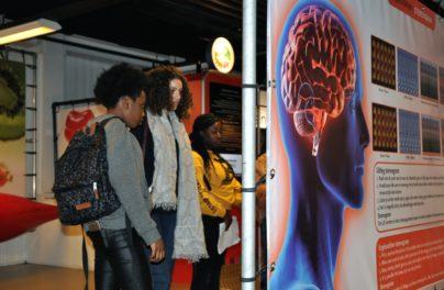 http://www.zuiderlichtcollege.nl/wp-content/uploads/DSC_0424.jpg